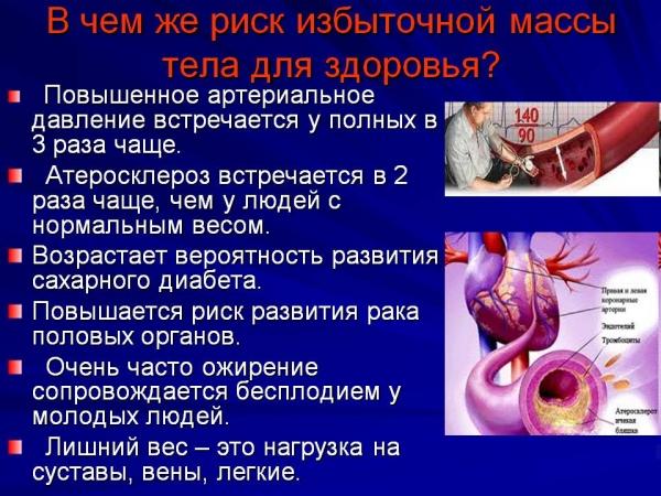 Капли для потенции молот тора купить в украине