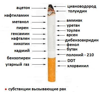 Как влияет сигареты на организм человека