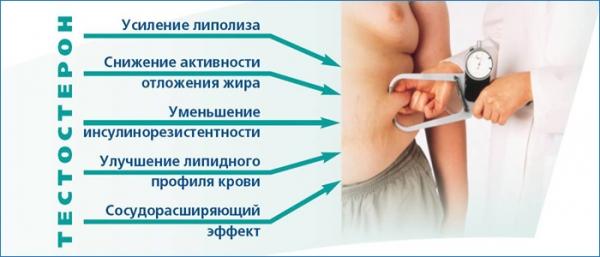 Влияние нормальных показателей ГСПГ на человеческий организм