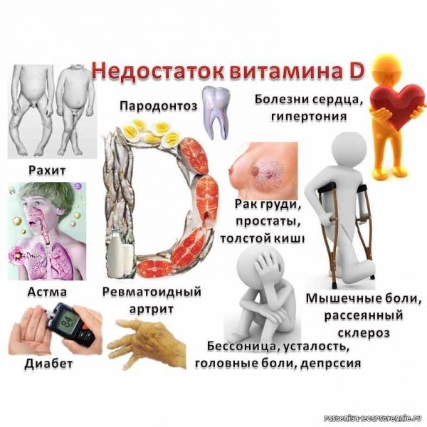 витамин д и потенция мужчин