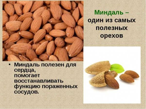 Почему полезен миндальный орех